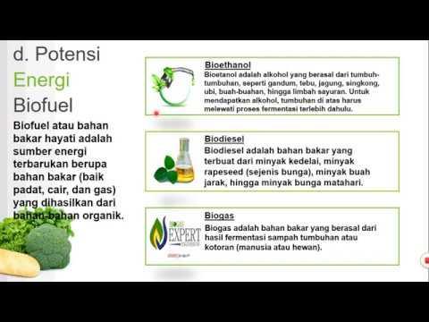 Global Biogas dan Biometana Market