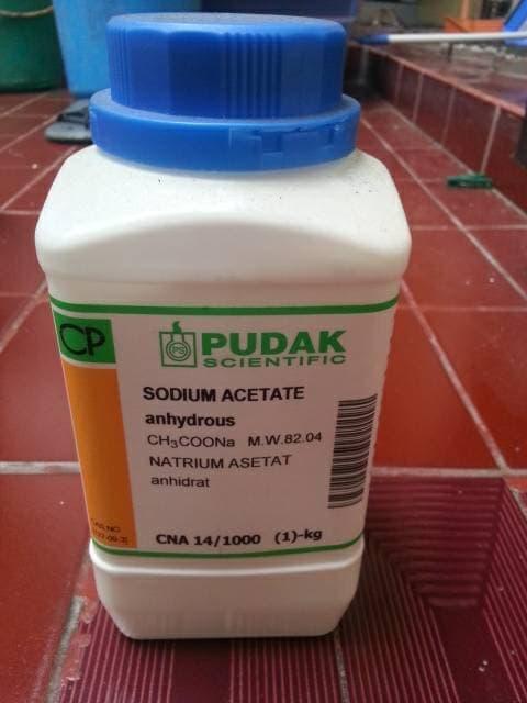 Global Garam Asetat Market