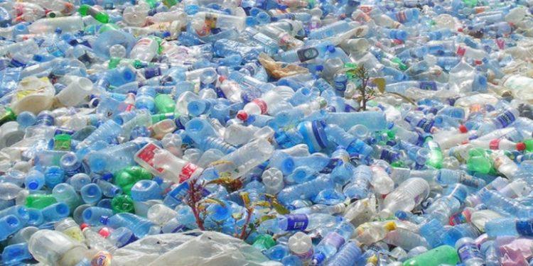 Global Kemasan Bioplastik Market