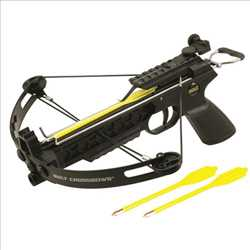 Global Crossbows Market