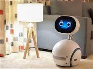 Robotika Konsumen, Pasar Robotika Konsumen, Pasar Robotika Konsumen