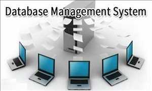 Pasar Sistem Manajemen Basis Data (DBMS)