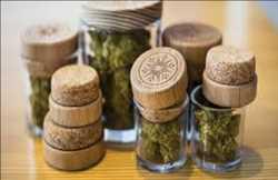 Marché de l'emballage du cannabis