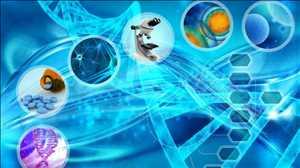 Pasar BPO Ilmu Hayati
