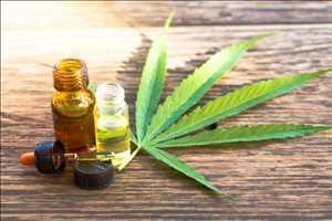 Ekstrak Cannabis Pasar