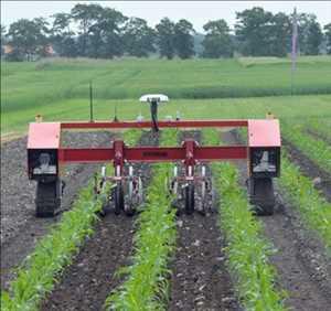 Robot Pertanian Pasar