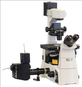 Mikroskop Confocal Pasar