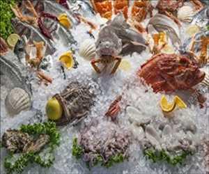 Ikan Beku dan Makanan Laut Pasar