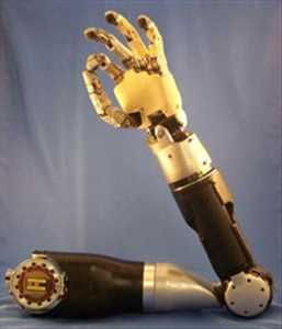 Prostetik Robotik Pasar