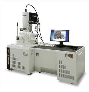 Pemindaian Mikroskop Elektron Pasar