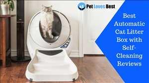 Pasar Kotak Sampah Kucing yang Membersihkan Sendiri Global