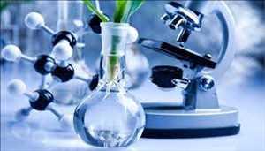 Bio Polypropylene Pasar