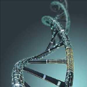 Biologi Sintetis Pasar